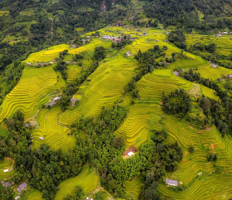 Tour du lịch 2 ngày 3 đêm Hà Nội – Hoàng Su Phì khám phá những triền ruộng bậc thang được mệnh danh đẹp nhất Việt Nam